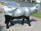 Вентспилс: Коровы