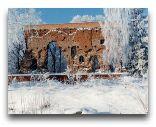 Вильянди: Развалины замка