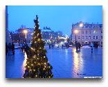 Вильнюс: Новый год в Вильнюсе