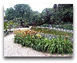 Ялта: Никитский Ботанический сад