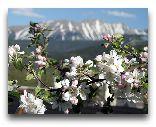 Закопане: Весна в Закопане