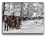 Закопане: Зимние сани