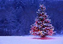 Новый год и Рождество в Цахкадзоре 2016