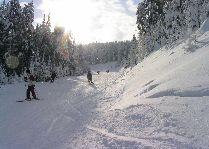 Зимний отдых в Грузии