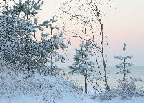 Зимние каникулы в Jurmala SPA Hotel