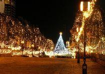 Тур в Калининград: Новогодняя феерия